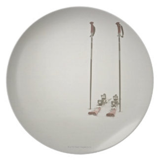 Empty Skis and Poles Dinner Plates