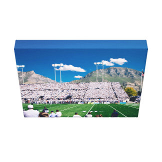 Empty Themed, Sports Fans Watch An Event From The Canvas Print