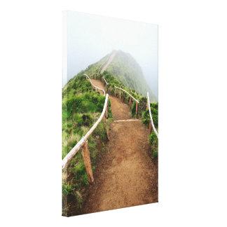 Empty walking trail canvas print