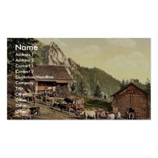 Emsigenalp with Sennhutten, Pilatus, Switzerland v Business Cards