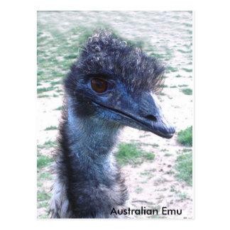 Emu australiano tarjetas postales