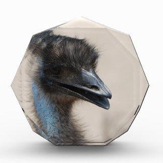 Emu Acrylic Award