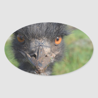 Emu Bird Stickers