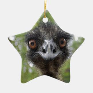 Emu Ceramic Ornament