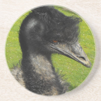 Emu Coaster
