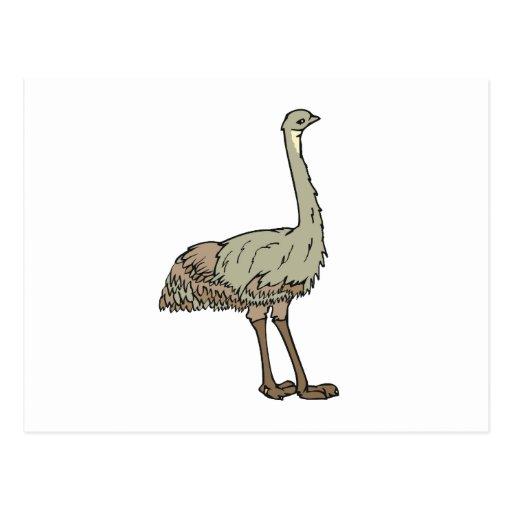 Emu de Elmer Tarjetas Postales