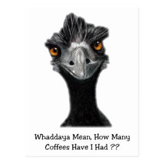 Emu: Divertido, humor: Demasiados cafés: Arte Postales