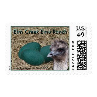 Emu & eggs stamp-customize