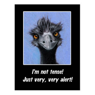 EMU: FUNNY SAYING FOR TENSE BOSS OR OTHERS POSTCARD