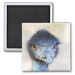 Emu Imán Para Frigorifico