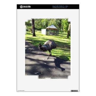 Emu iPad 2 Decal