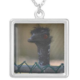 Emu Jewelry