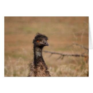 Emu Often EMU-lated Never Equaled card