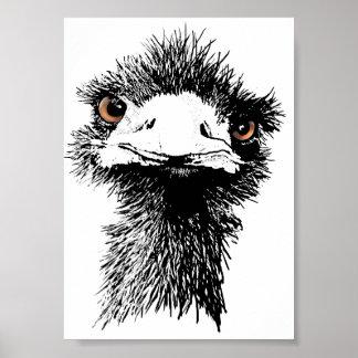 Emu Posters