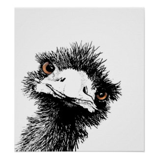 Emu – Pen and Ink Poster