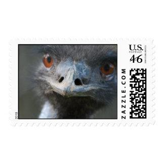 Emu  Postage Stamps