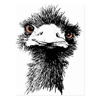 Emu Postales