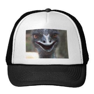 ¡Emu que dice el HI! Imagen grande de los ojos del Gorras