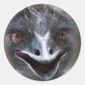 ¡Emu que dice el HI! Imagen grande de los ojos del Pegatina Redonda