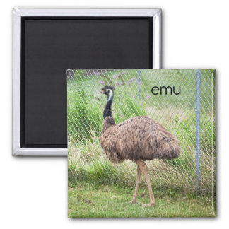 Emu Refrigerator Magnet