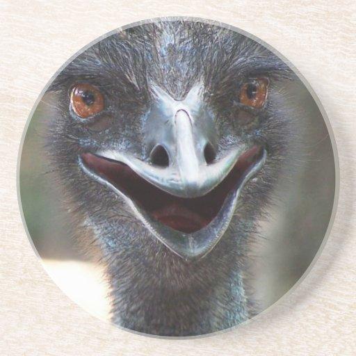Emu saying HI! Open beak big brown eyes picture Coasters