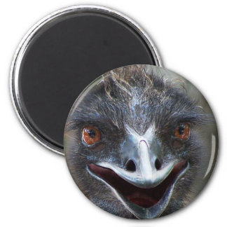 Emu saying HI! Open beak big brown eyes picture Magnet