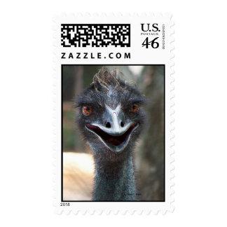 Emu saying HI! Open beak big brown eyes picture Postage