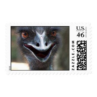 Emu saying HI! Open beak big brown eyes picture Stamps