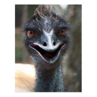 Emu saying HI! Open beak big brown eyes picture Postcards