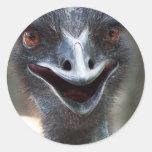 Emu saying HI! Open beak big brown eyes picture Stickers