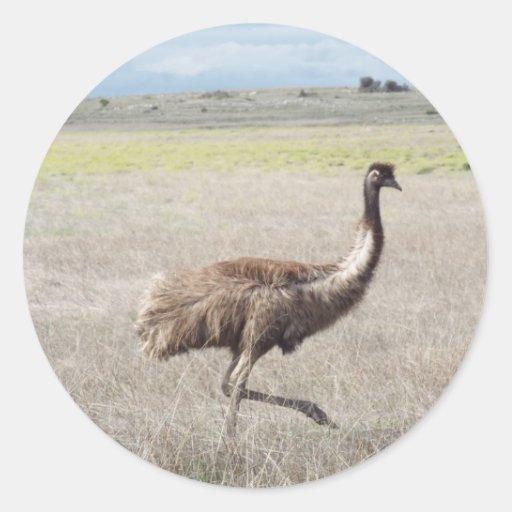 emu strut sticker