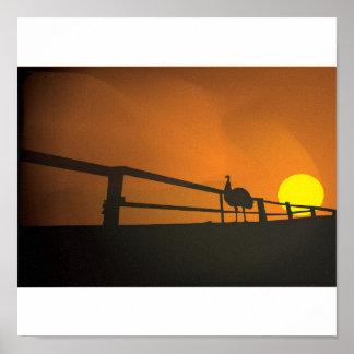 Emu Sunset Poster