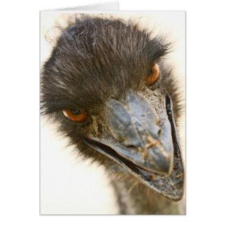 Emu Tarjeta De Felicitación