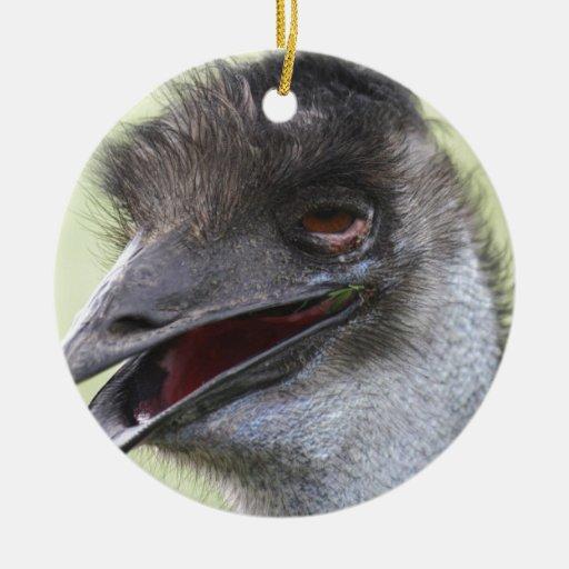 Emu tonto adorno para reyes