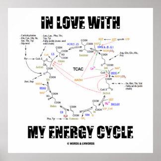 En amor con mi ciclo de la energía (ciclo de Krebs Posters