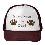 En años del perro, soy gorra muerto
