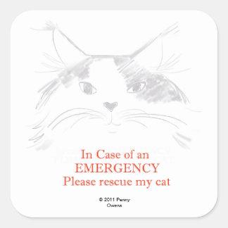 En caso de una emergencia rescate por favor mi pegatina cuadrada