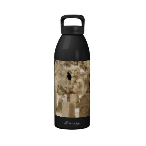 En el mundo gótico de cuervos botellas de agua reutilizables