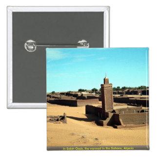 En el oasis de Salah, el más caliente del Sáhara,  Pins
