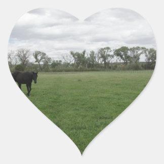 En el pasto pegatina en forma de corazón