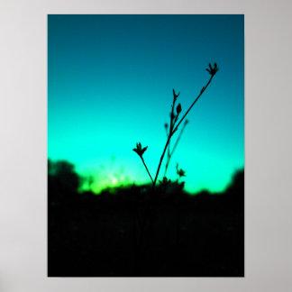 En el poster ideal del arte de la fotografía