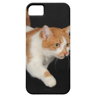 En el vagabundeo iPhone 5 Case-Mate carcasas