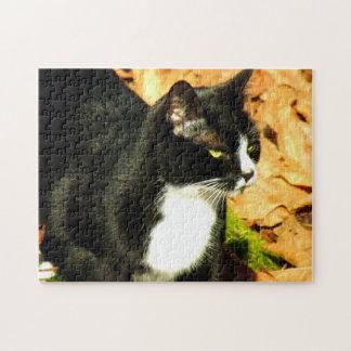 En el vagabundeo puzzle con fotos