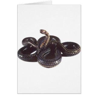 En espiral y listo para pegar la serpiente tarjeta de felicitación