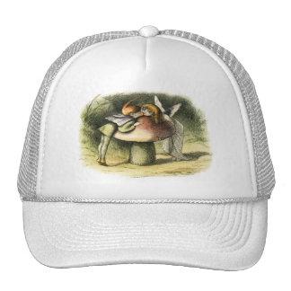En Fairyland un beso de hadas de Richard Doyle Gorra