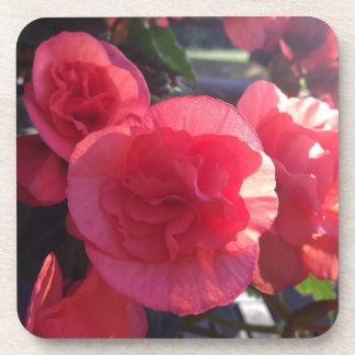 En flor posavasos de bebida