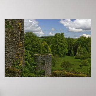 En Irlanda, en el castillo de la lisonja una torre Póster
