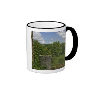 En Irlanda en el castillo de la lisonja una torre Taza