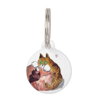 En la caja - juego del gato y del gatito placa para mascotas