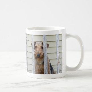 """En la caseta de perro "" Tazas De Café"